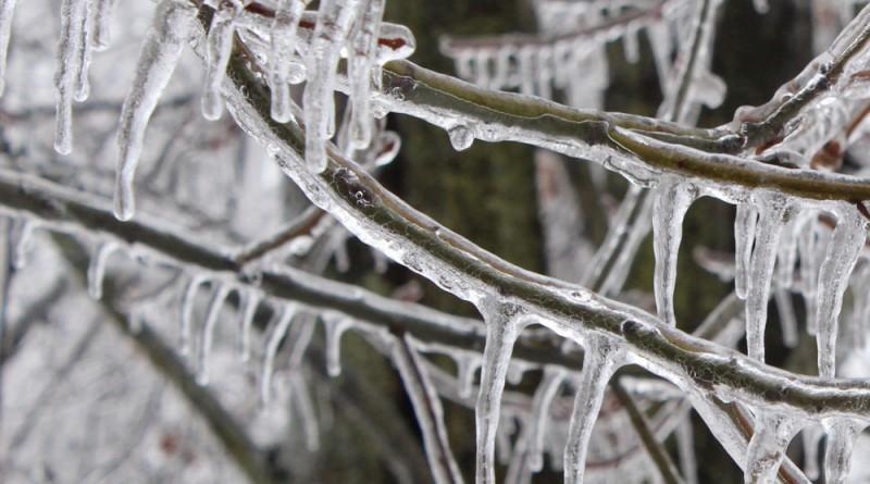 Consommation d'électricité pendant les périodes très froides