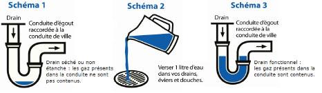 sketch_fr