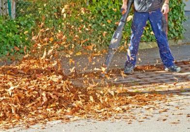 Utilisation de souffleuses à feuilles pendant la période d'automne