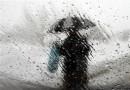 La gestion des eaux de pluie à Westmount