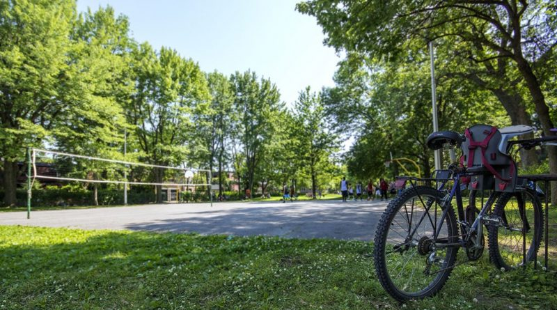 Stayner Park: partial closure in August and September 2019