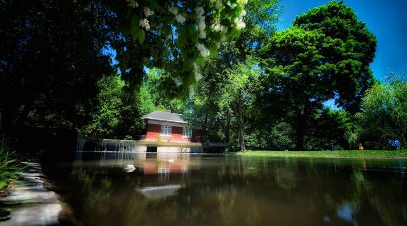 Consultation publique : Projet parc Westmount – le 13 novembre au Victoria Hall