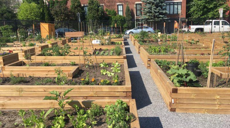 Community gardens closed